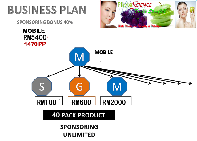weebly business plan